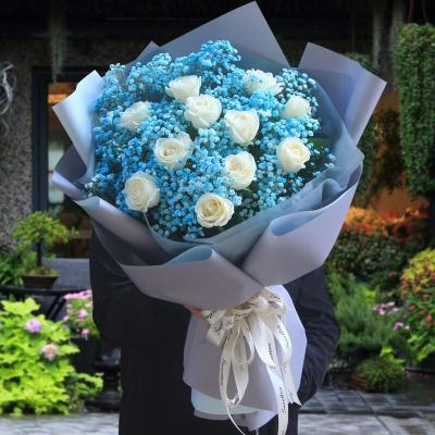最浪漫的事-11白玫瑰蓝色满天星