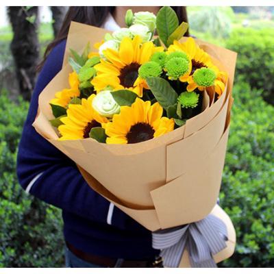 阳光男孩-6朵向日葵
